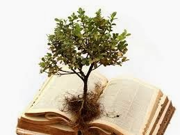 growth from scripture